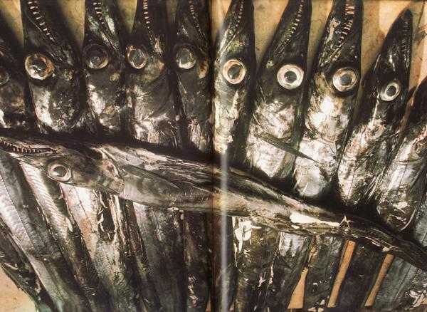 Fiskar á Madeira og í Føroyum