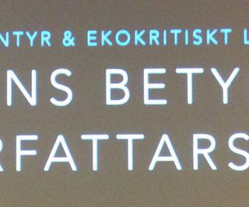 Rithøvundamøti: Mette Karlsvik